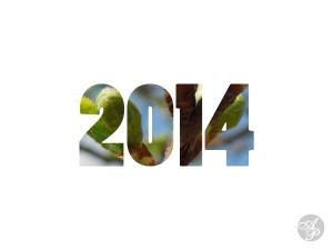 Ganduri bune pentru 2014