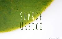 Supa de Urzici